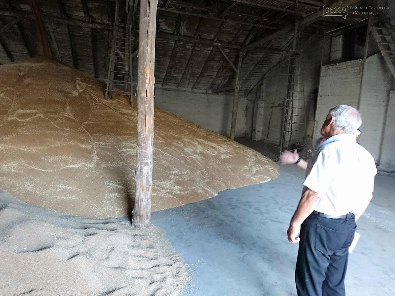 У Покровську рятувальники дбають про збереження хлібного врожаю, фото-1