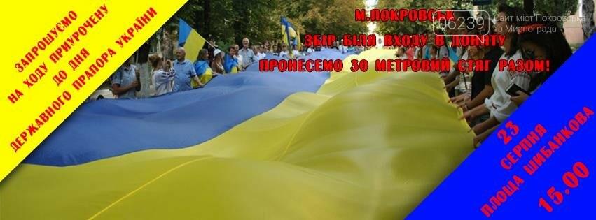 В Покровске пройдет шествие ко Дню флага Украины, фото-1