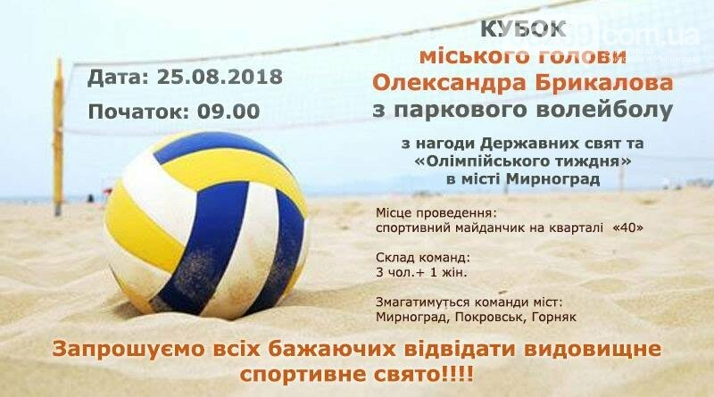 Накануне Дня Шахтёра и Дня города в Мирнограде пройдет турнир по парковому волейболу , фото-1