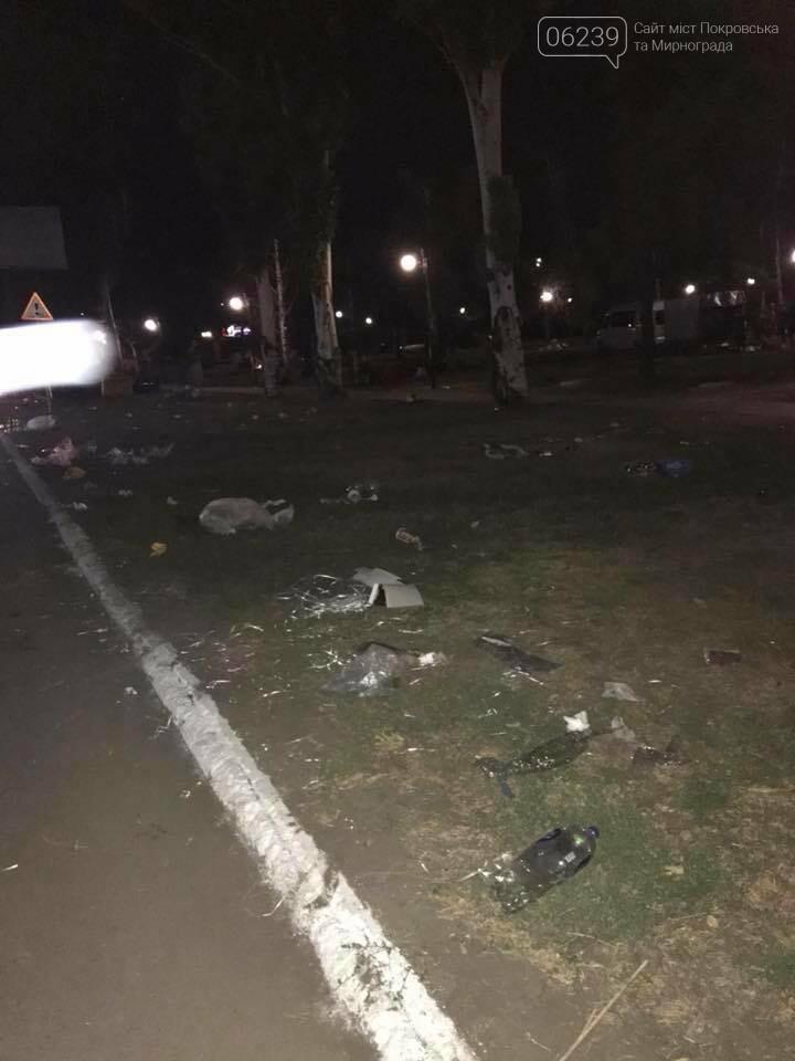 В Покровске после бурного празднования Дня города место проведения праздника превратилось в гору мусора, фото-1