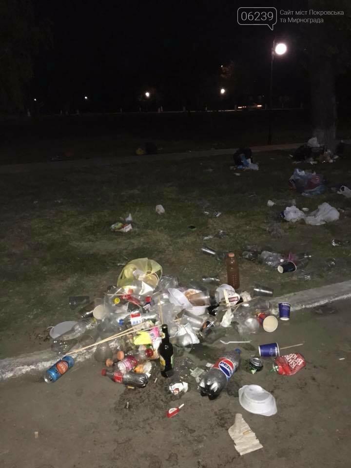 В Покровске после бурного празднования Дня города место проведения праздника превратилось в гору мусора, фото-3