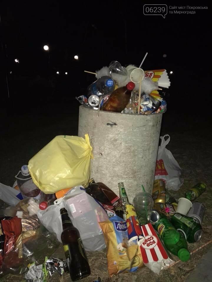В Покровске после бурного празднования Дня города место проведения праздника превратилось в гору мусора, фото-2