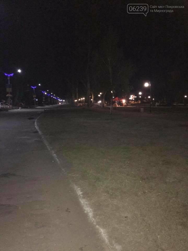 В Покровске после бурного празднования Дня города место проведения праздника превратилось в гору мусора, фото-4