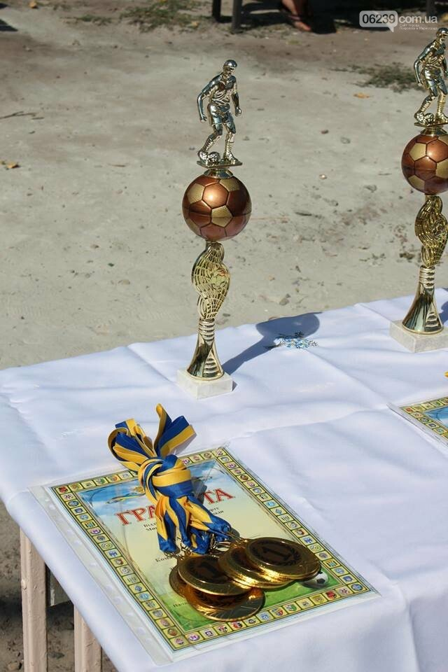 В Мирнограде прошло первенство города по мини-футболу, фото-3