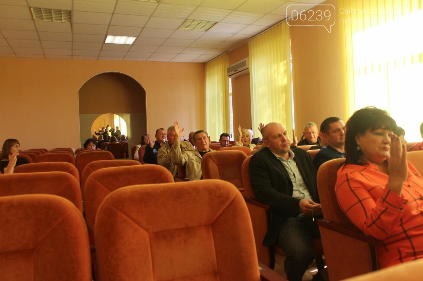 В Мирнограде существенно снизили порог голосов для рассмотрения электронных петиций , фото-1