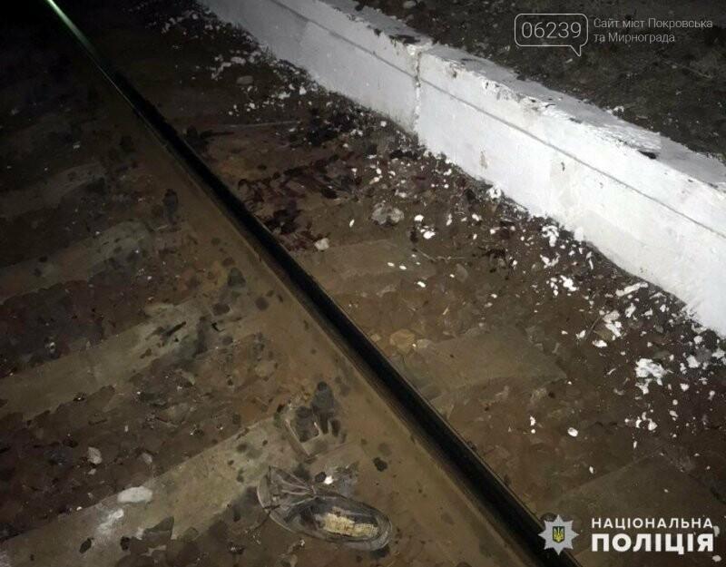 В Мирнограде человек попал под поезд, фото-4