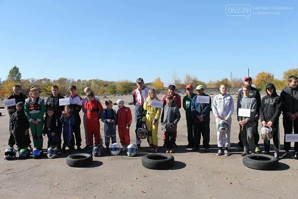 Областные соревнования по картингу: бесспорным победителем в командном зачете стал Покровск, фото-1