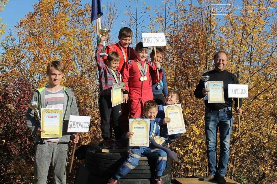Областные соревнования по картингу: бесспорным победителем в командном зачете стал Покровск, фото-6