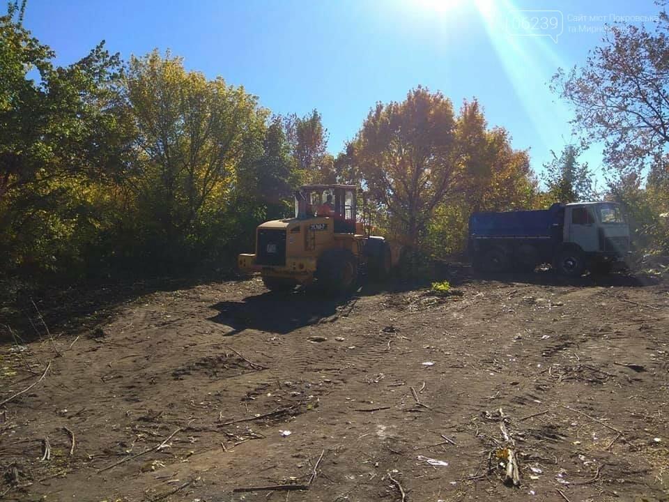 В Мирнограде продолжаются работы по расчистке улиц частного сектора от зарослей и бытового мусора, фото-1