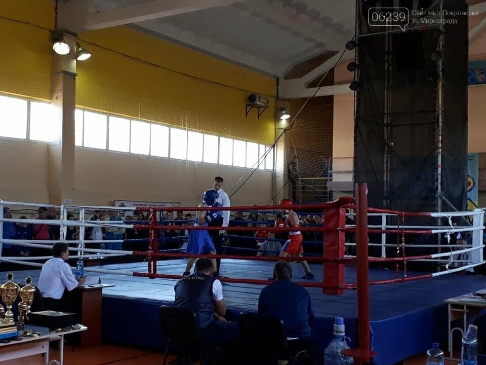В Покровске состоялось торжественное открытие Чемпионата Украины по боксу среди юношей, фото-3