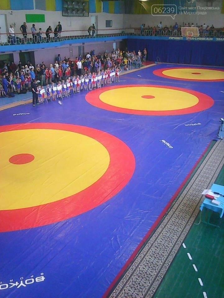На соревнованиях по вольной борьбе в Харьковской области мирноградские спортсмены завоевали 2 призовых места , фото-1