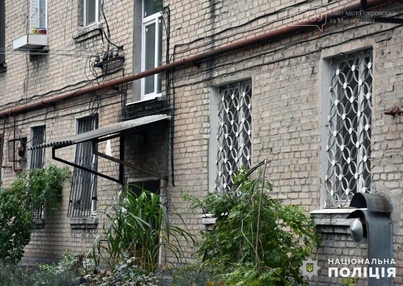 В Покровске появился очередной «Безопасный дом», фото-7