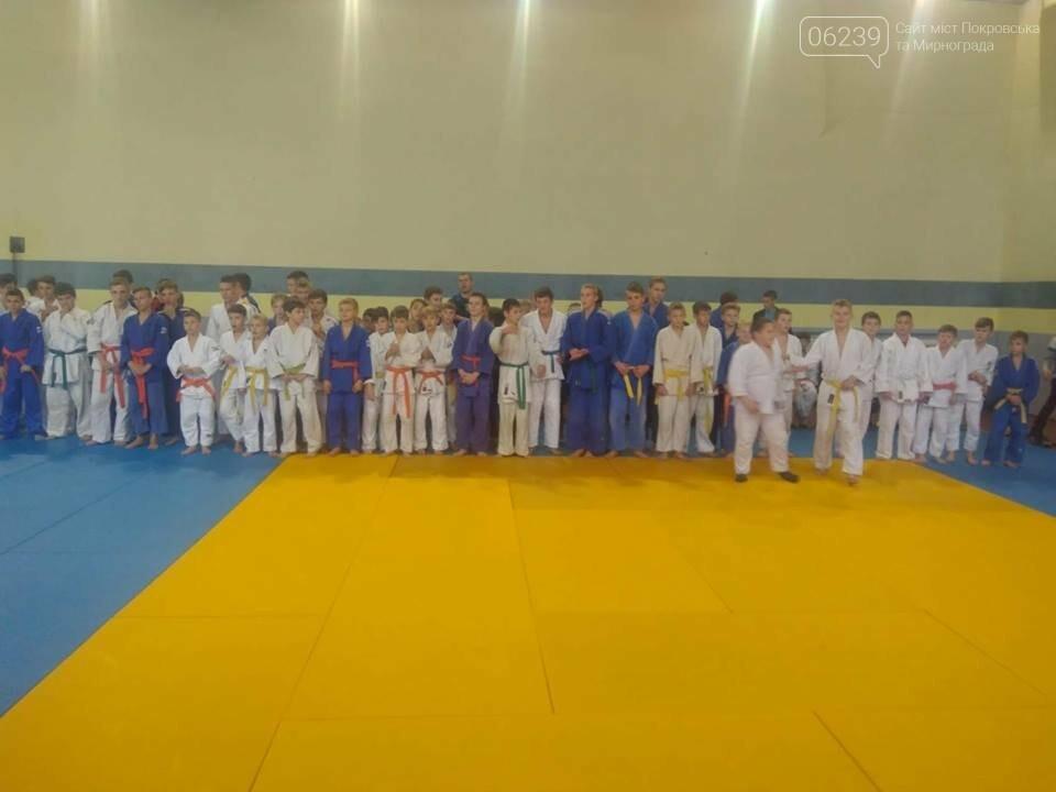 Мирноградські спортсмени посіли командне 3-тє місце на відкритому Чемпіонаті з дзюдо серед юнаків, фото-1