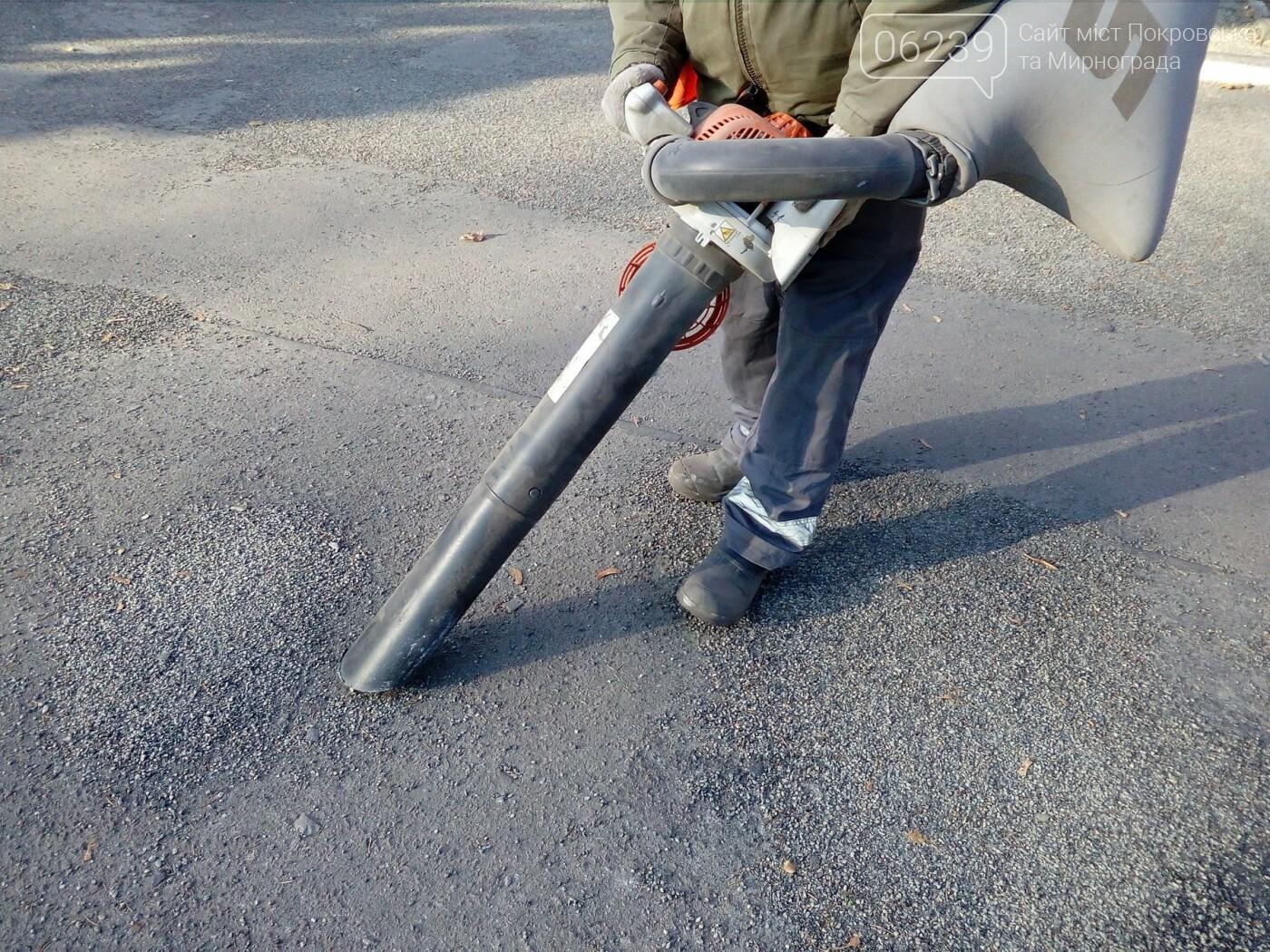 Покровские дворники сменили метлы на пылесосы, фото-2