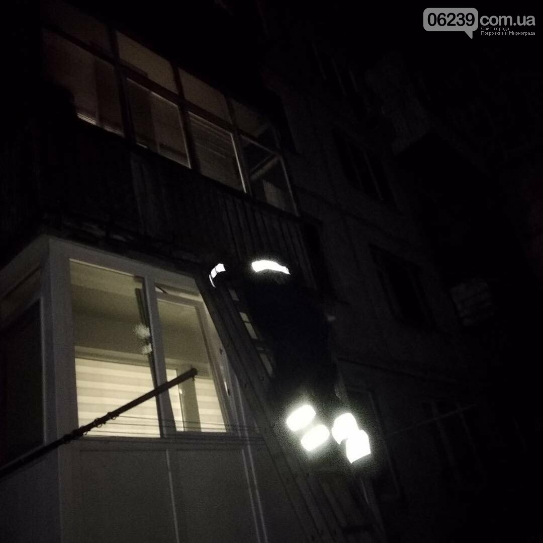 Спасатели Мирнограда открывали дверь квартиры, в которой закрылся полуторагодовалый малыш, фото-4