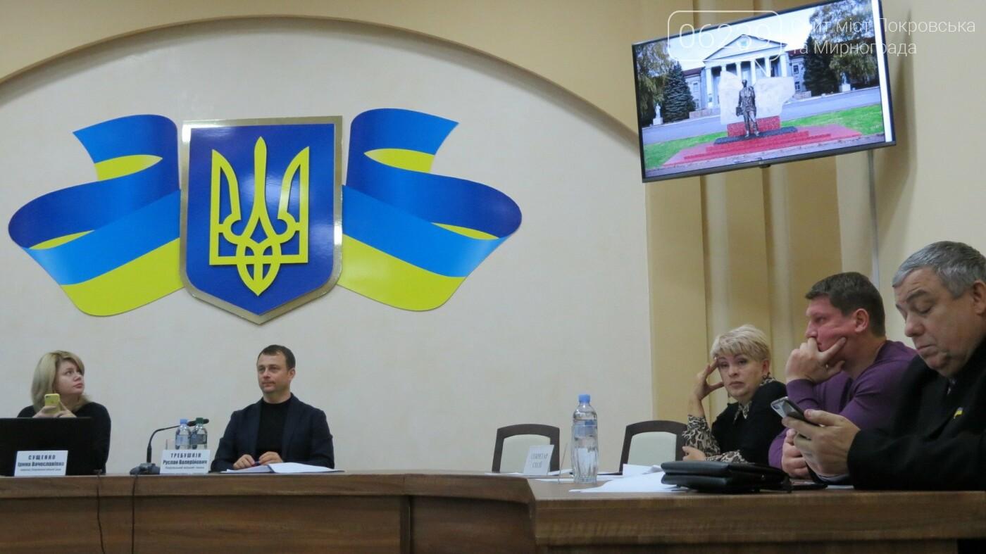Европеец Шевченко: депутатам Покровска показали возможные варианты памятника, фото-2