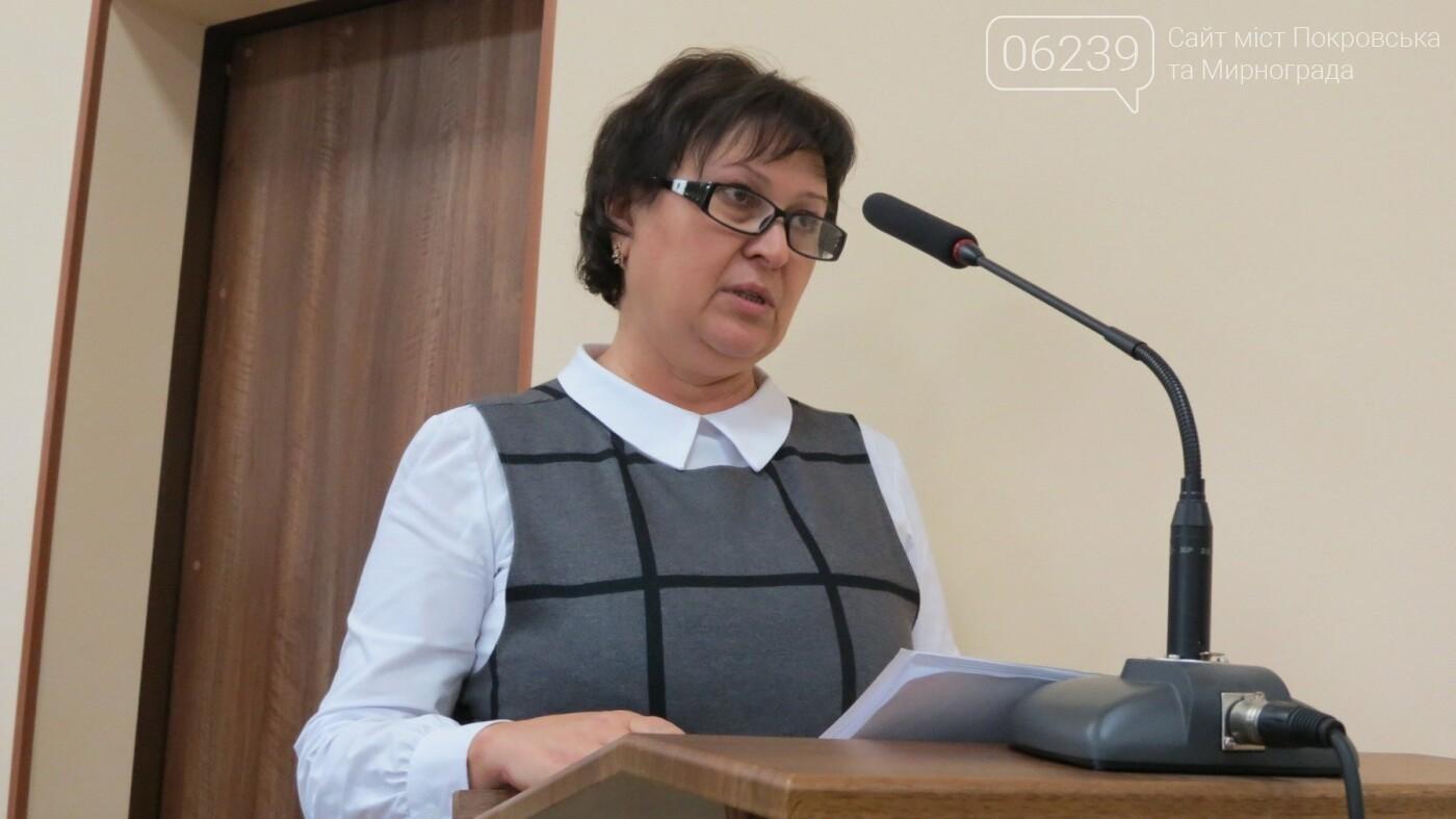 В мэрии Покровска появится отдел экологии, климата и энергосбережения, фото-1
