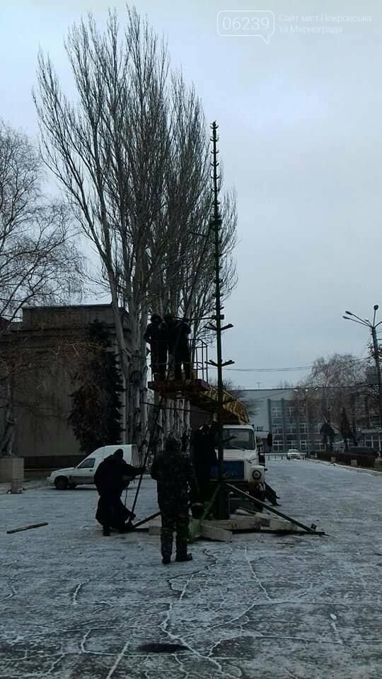 В Покровске начали устанавливать главную елку города, фото-2
