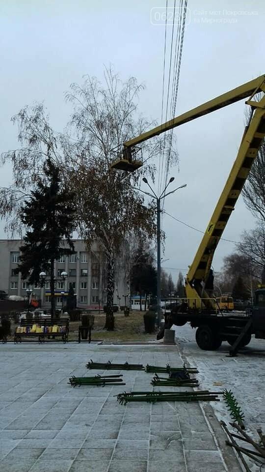В Покровске начали устанавливать главную елку города, фото-3