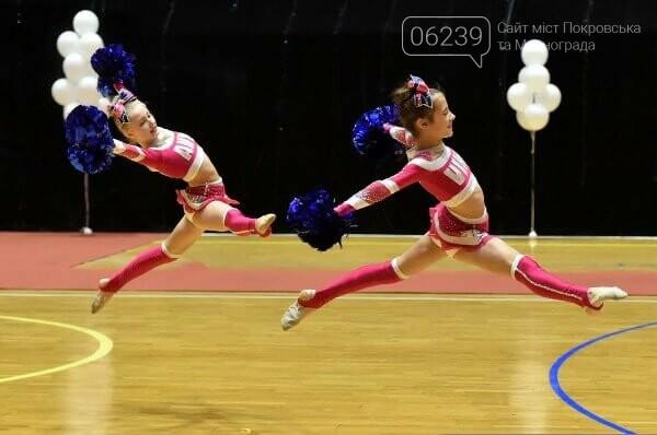 Черлідери з Покровська та Родинського гідно виступили на всеукраїнських змаганнях, фото-3
