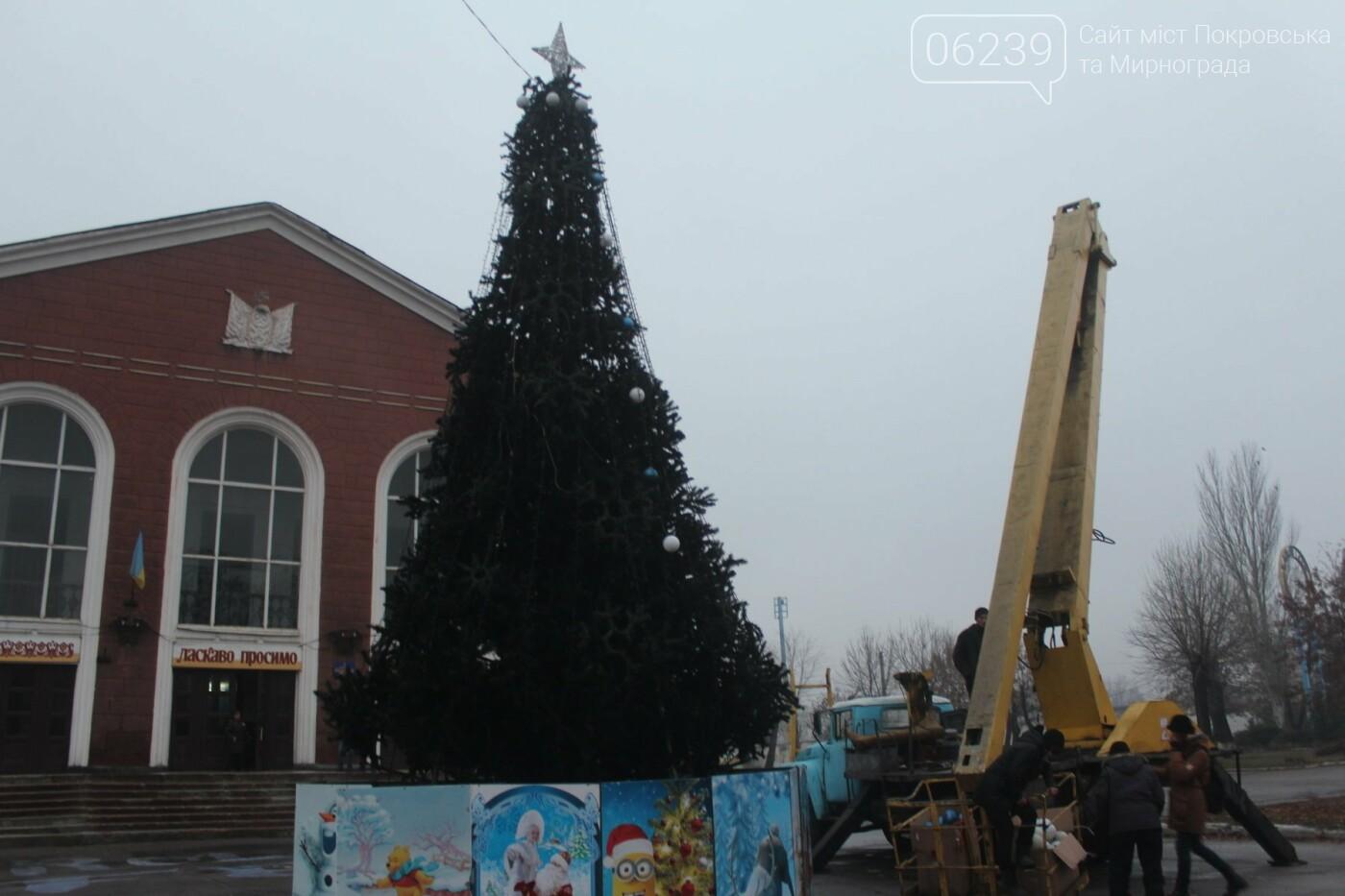 В Мирнограде установили главную елку города, стала известна дата ее открытия, фото-2