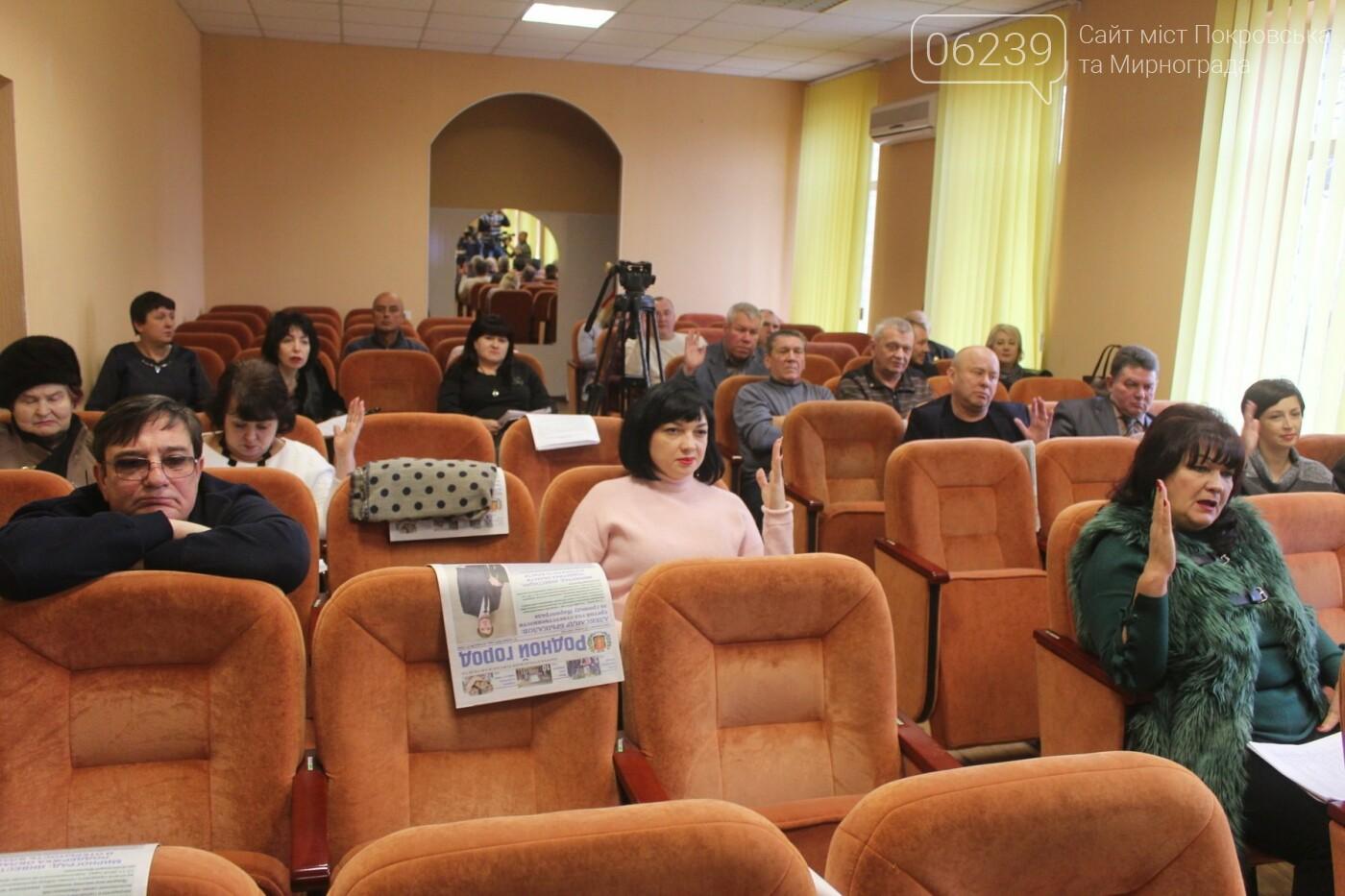 Бюджет на 2019-й год и реконструкция парка: в Мирнограде состоялась 54-я сессия городского совета, фото-7