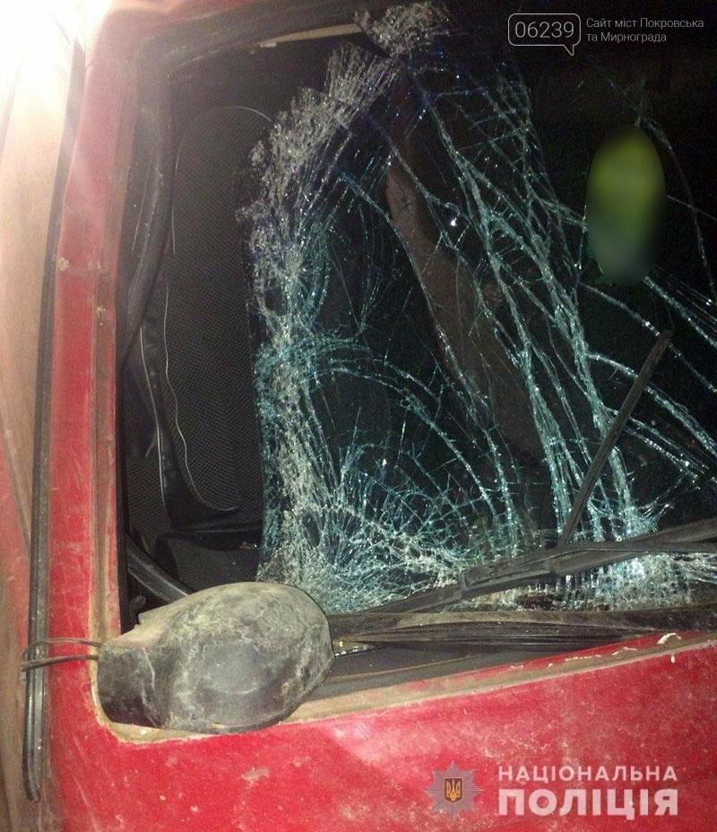 Пьяный за рулём без прав: в полиции Покровска рассказали подробности о виновнике смертельного ДТП, фото-4