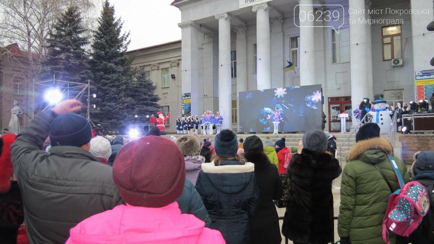 В Покровске зажгли главную новогоднюю елку, фото-10
