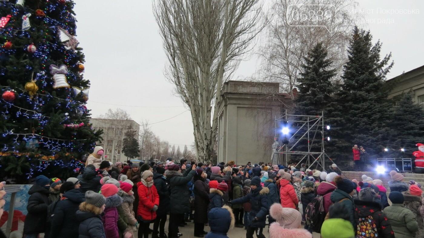 В Покровске зажгли главную новогоднюю елку, фото-6