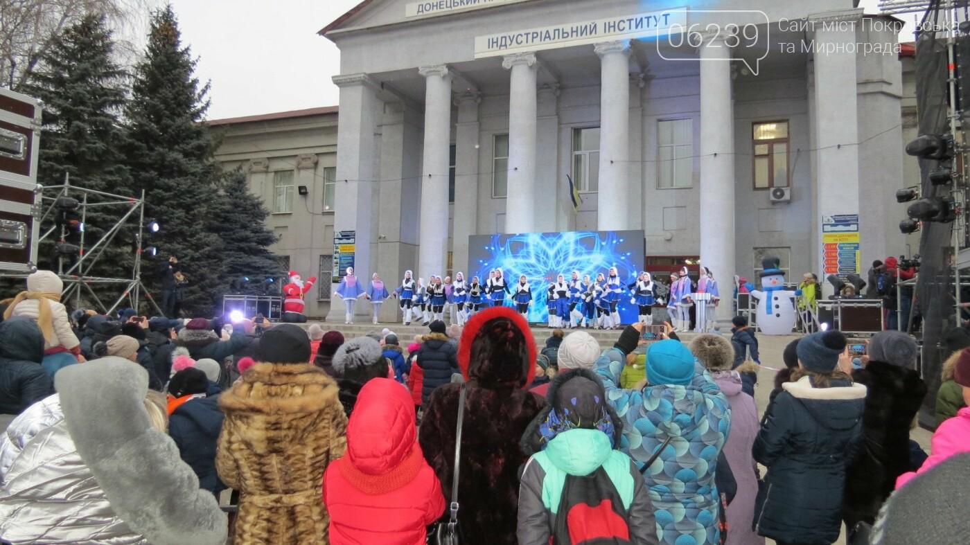 В Покровске зажгли главную новогоднюю елку, фото-21