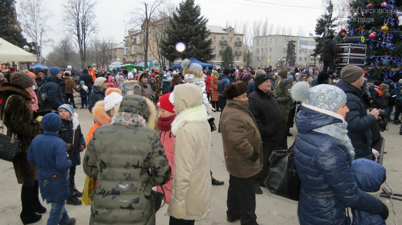 В Покровске зажгли главную новогоднюю елку, фото-20