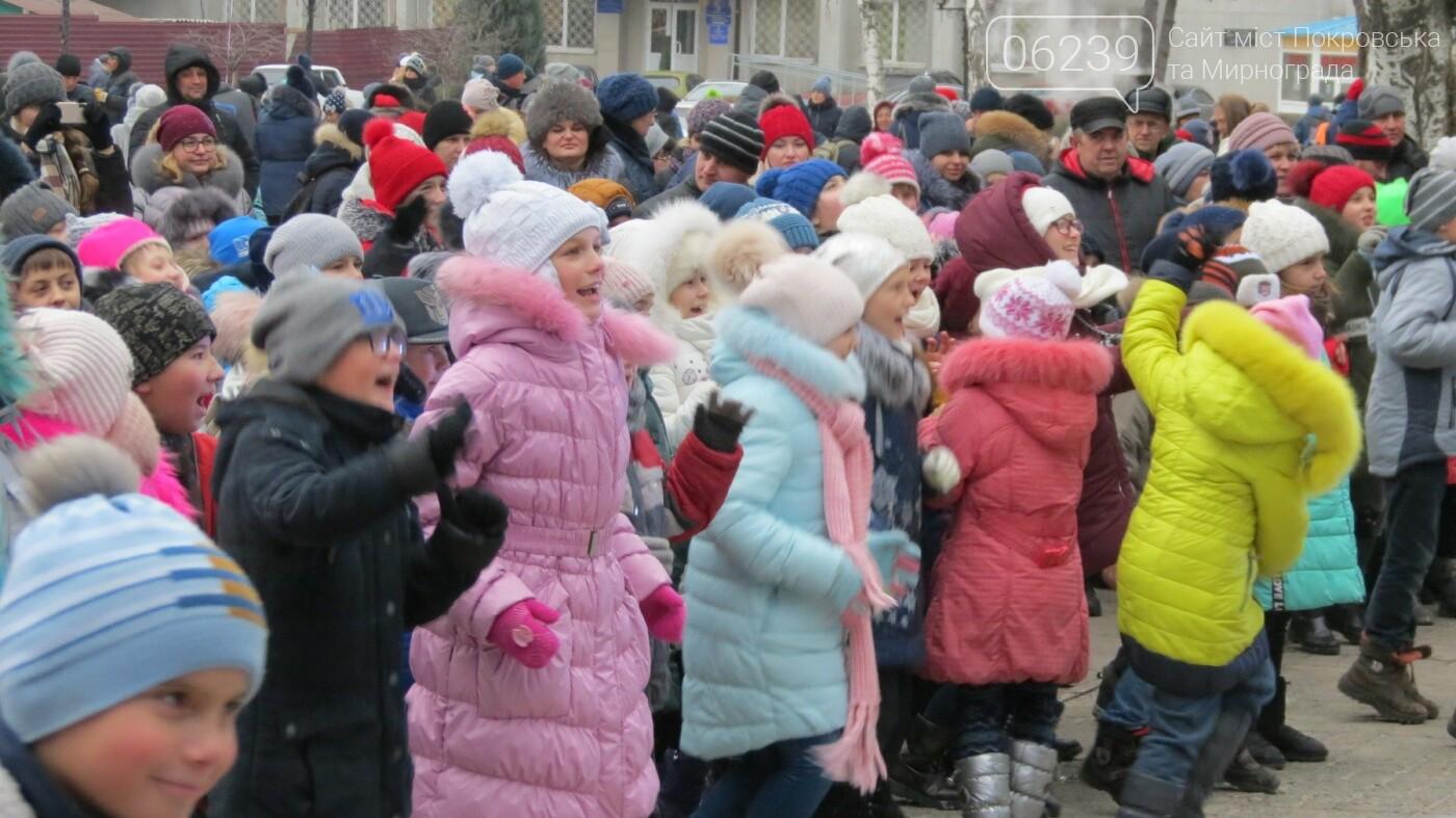 В Покровске зажгли главную новогоднюю елку, фото-11