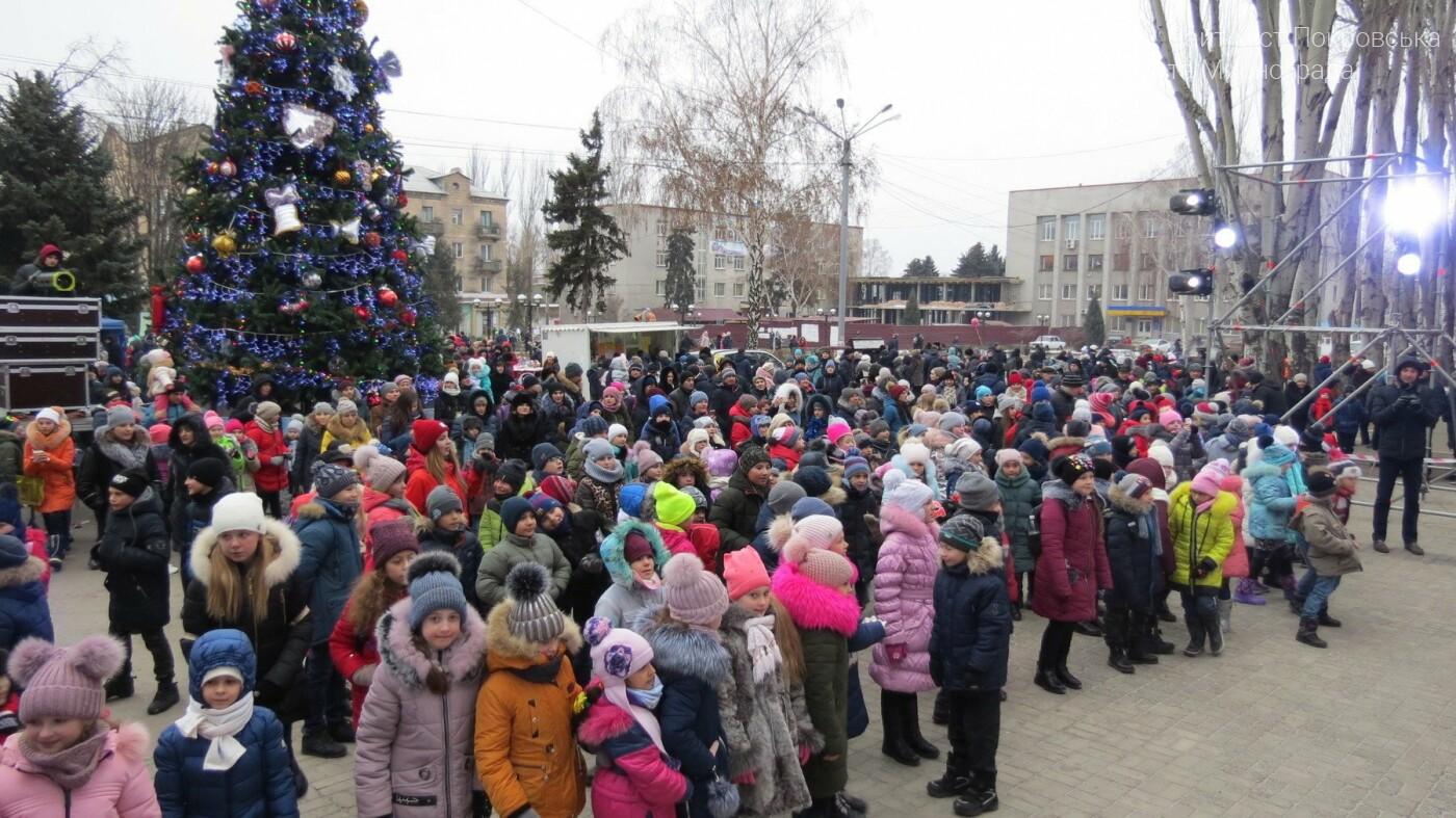 В Покровске зажгли главную новогоднюю елку, фото-36