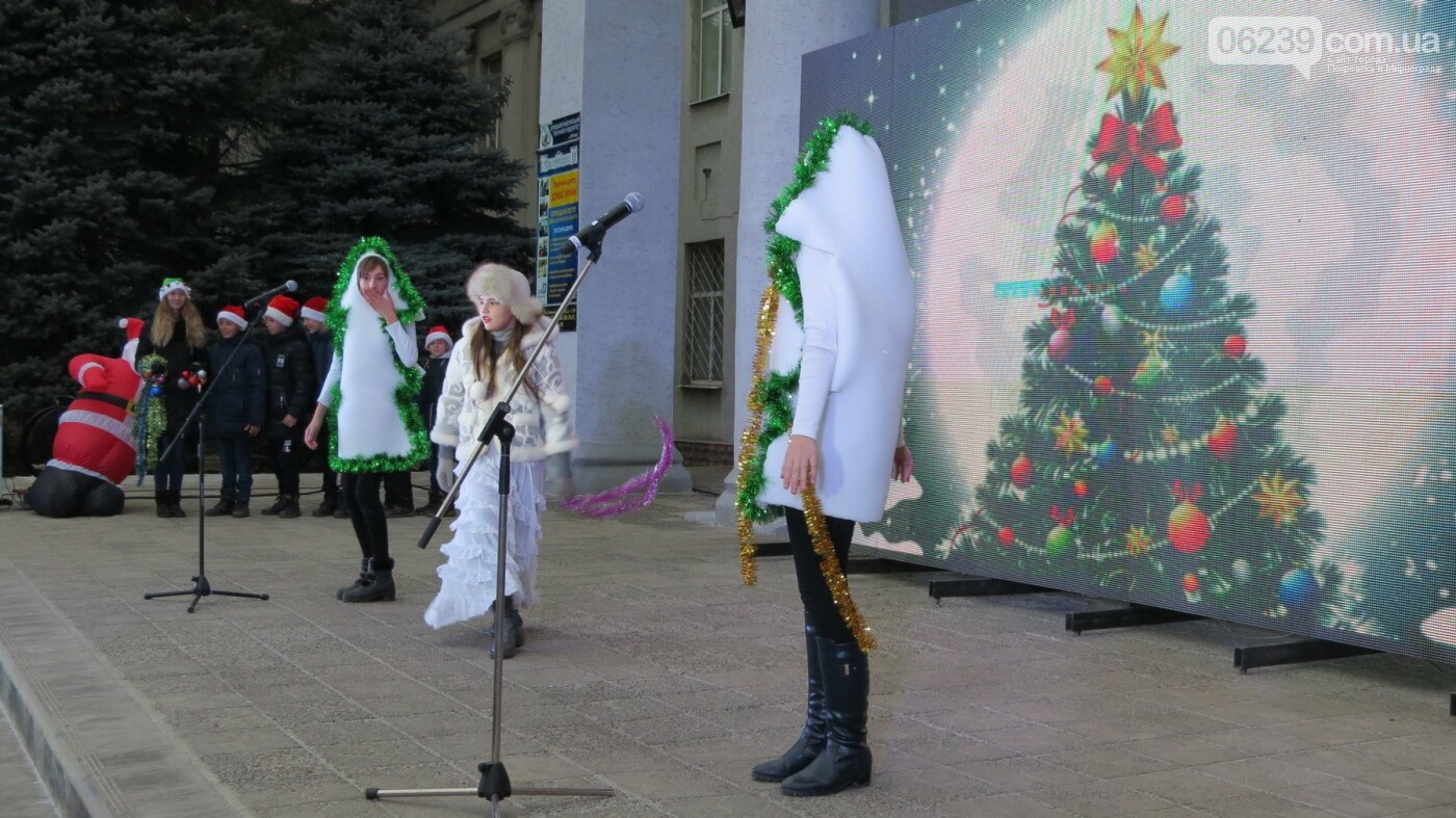 В Покровске зажгли главную новогоднюю елку, фото-27