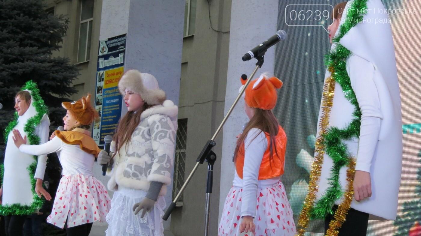 В Покровске зажгли главную новогоднюю елку, фото-42