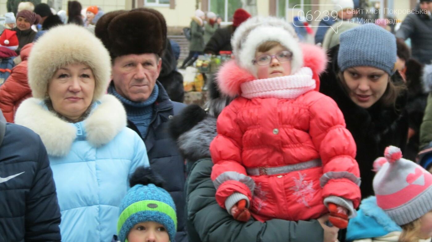 В Покровске зажгли главную новогоднюю елку, фото-40