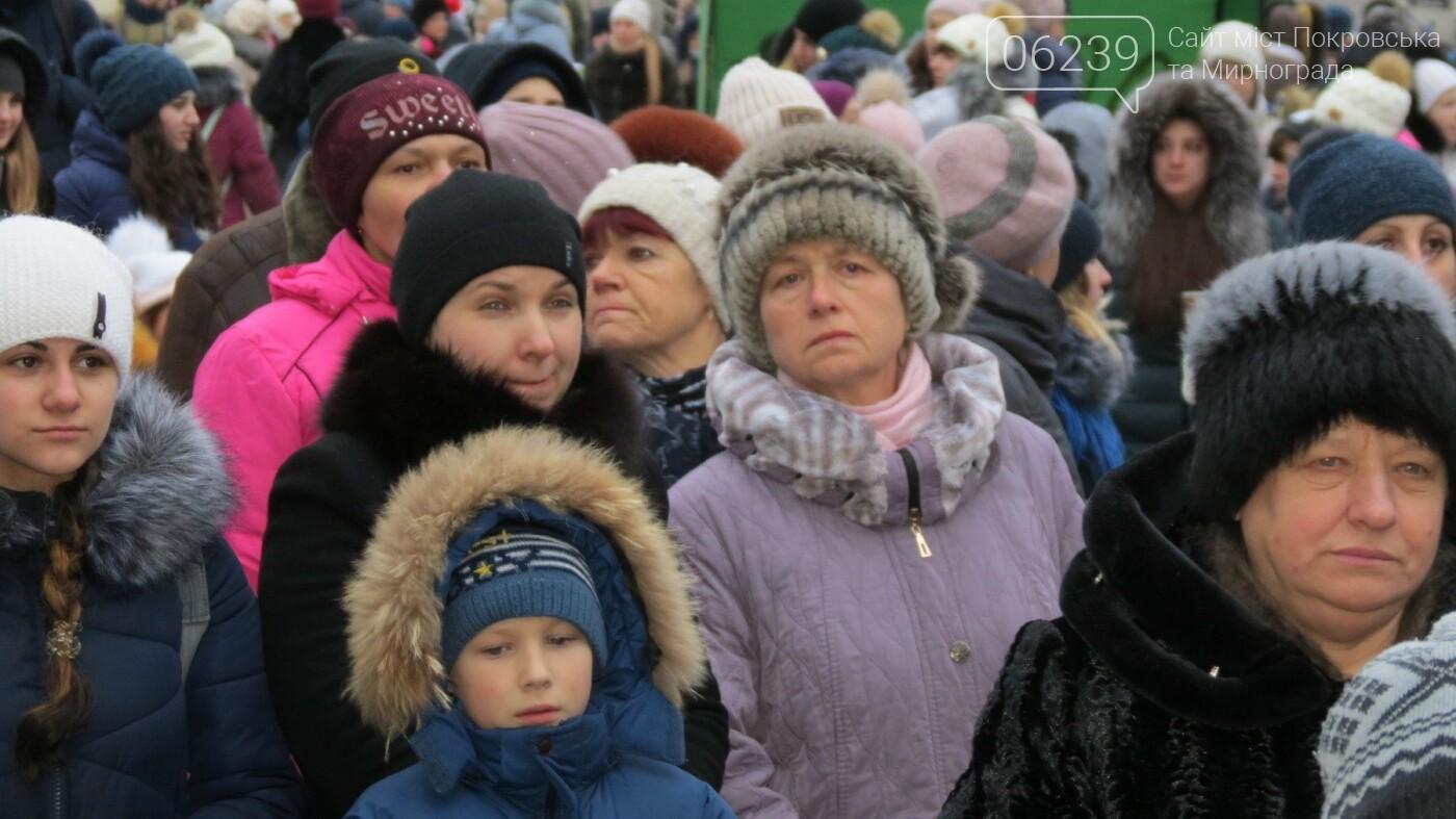 В Покровске зажгли главную новогоднюю елку, фото-31