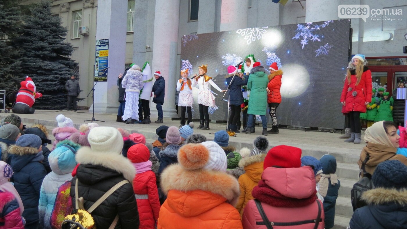 В Покровске зажгли главную новогоднюю елку, фото-45