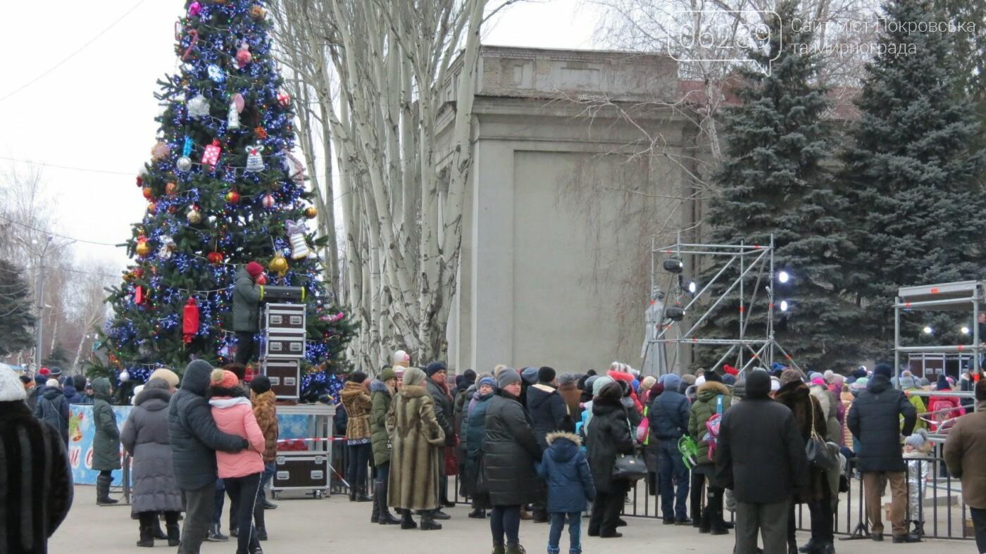 В Покровске зажгли главную новогоднюю елку, фото-48
