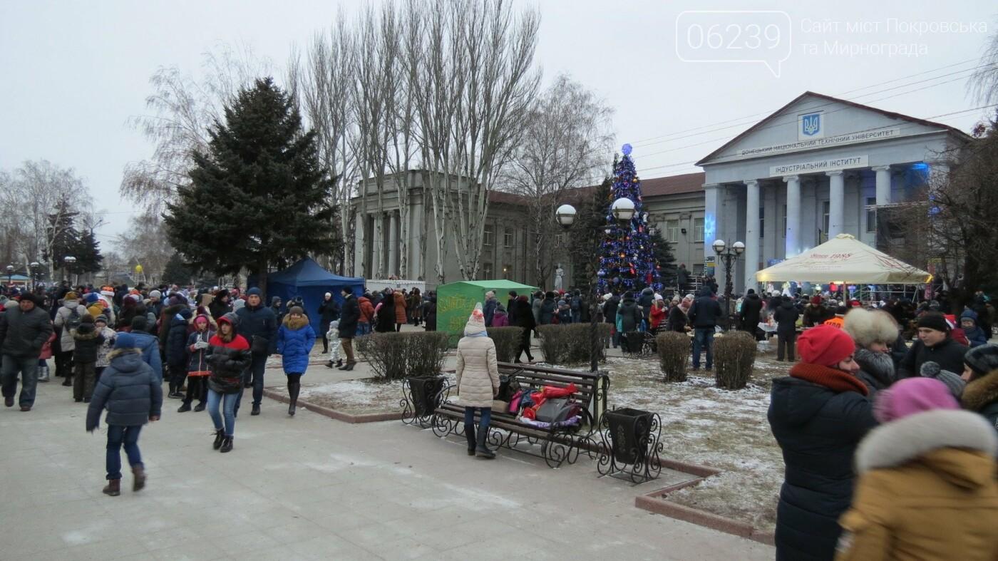 В Покровске зажгли главную новогоднюю елку, фото-47