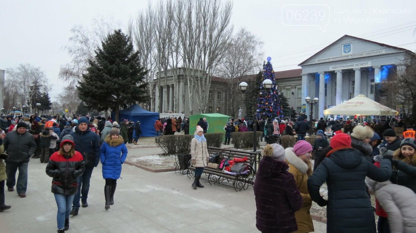 В Покровске зажгли главную новогоднюю елку, фото-34