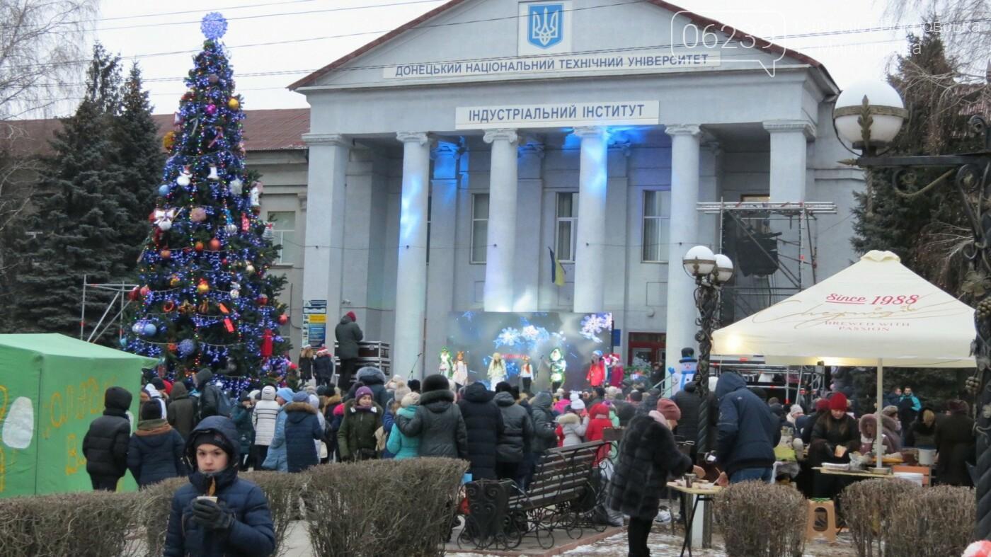 В Покровске зажгли главную новогоднюю елку, фото-38