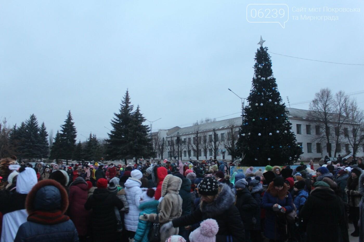 В Мирнограде торжественно открыли главную городскую ёлку , фото-1