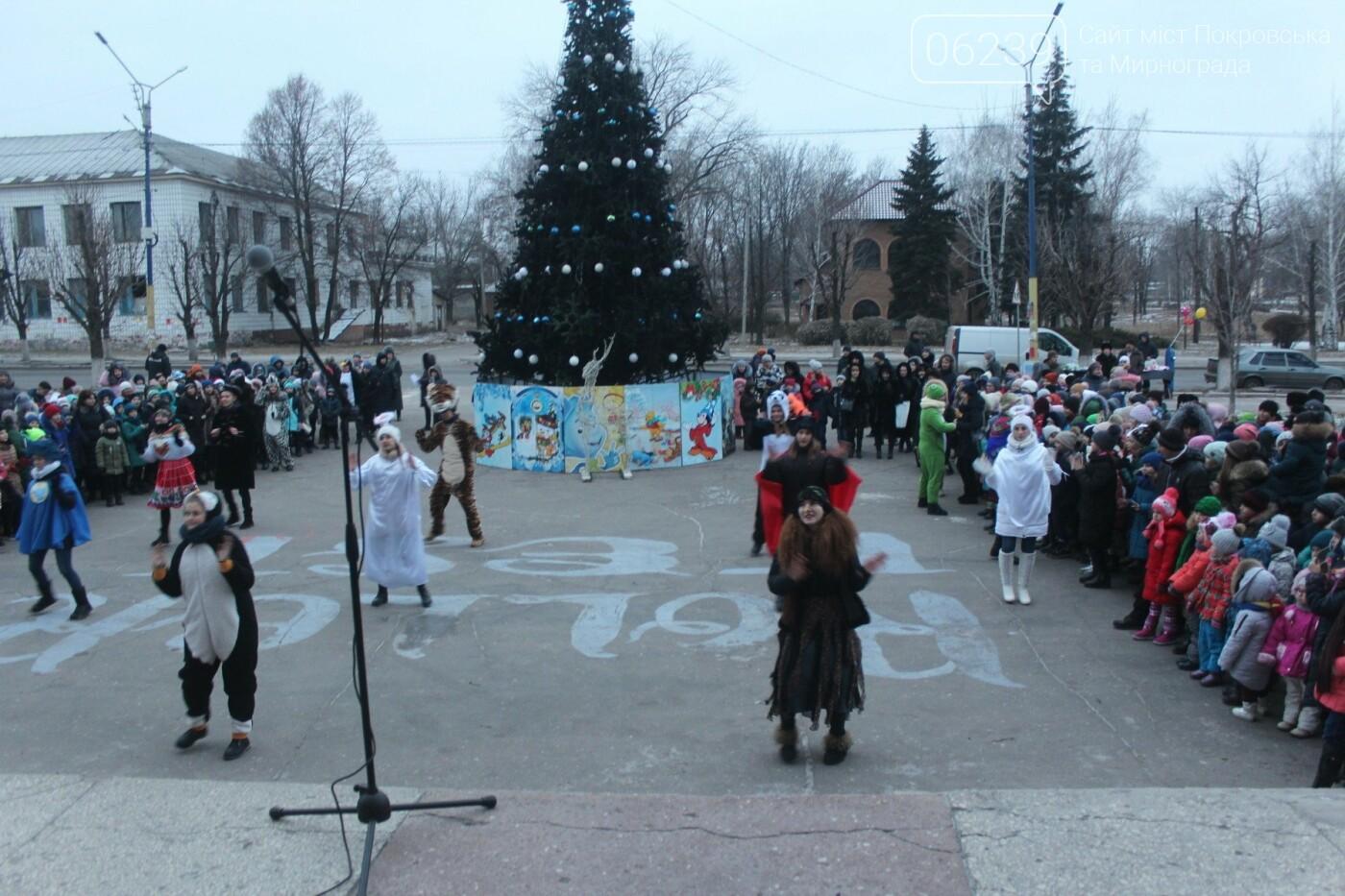 В Мирнограде торжественно открыли главную городскую ёлку , фото-6