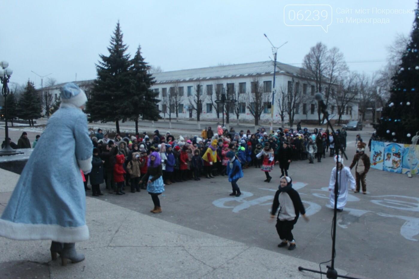 В Мирнограде торжественно открыли главную городскую ёлку , фото-2