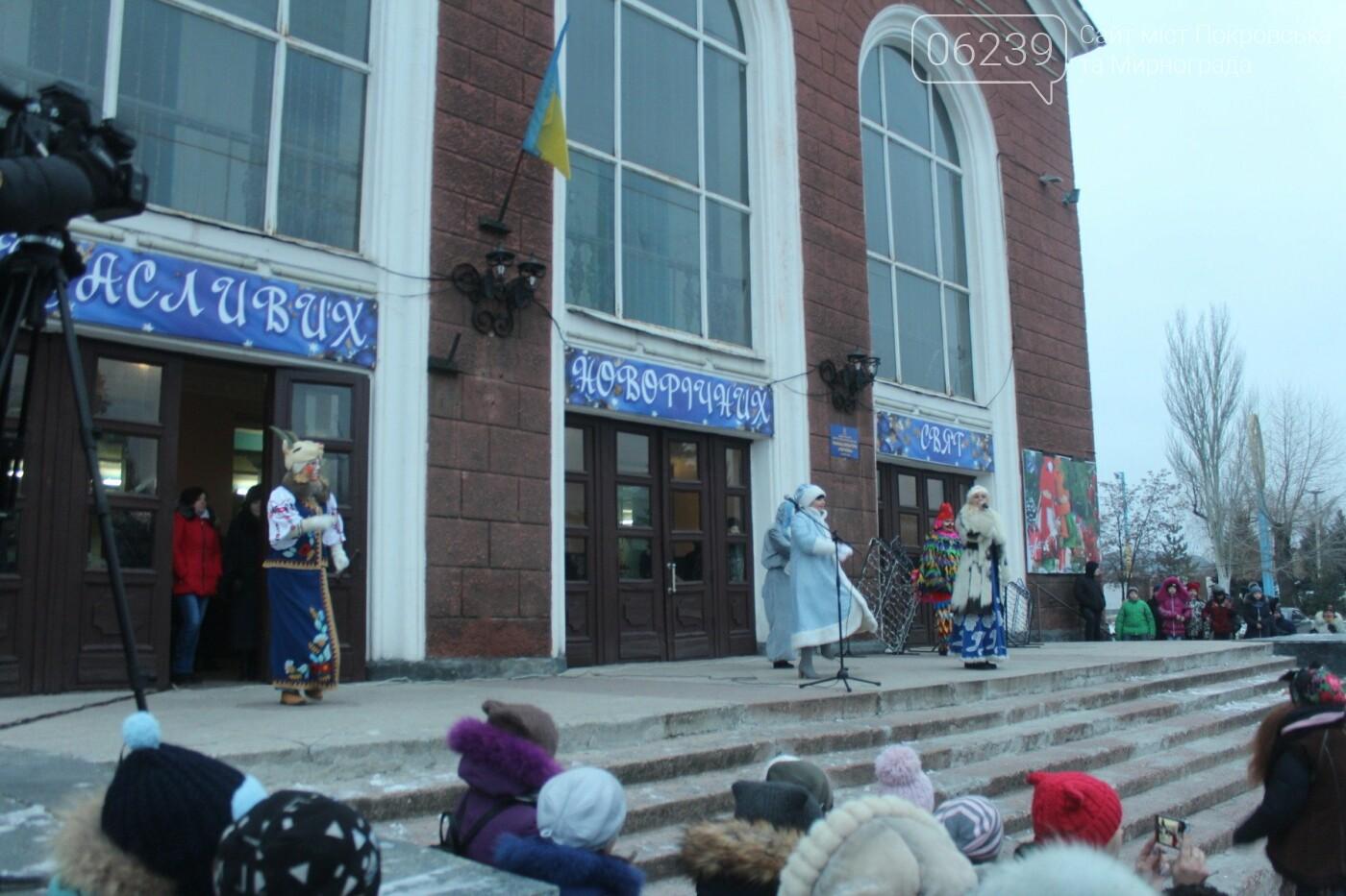 В Мирнограде торжественно открыли главную городскую ёлку , фото-4