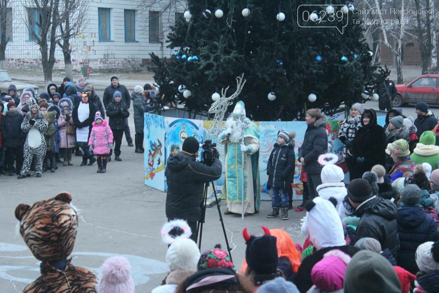 В Мирнограде торжественно открыли главную городскую ёлку , фото-11