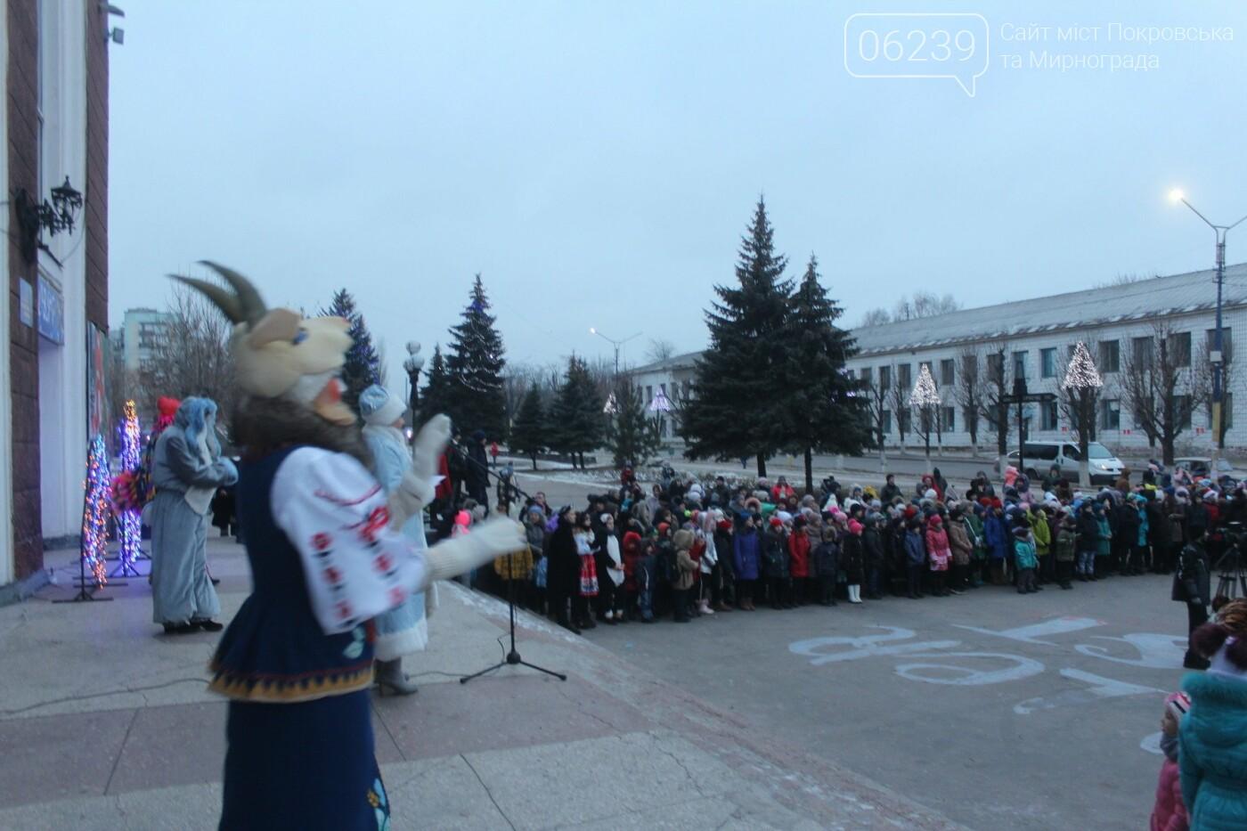В Мирнограде торжественно открыли главную городскую ёлку , фото-3