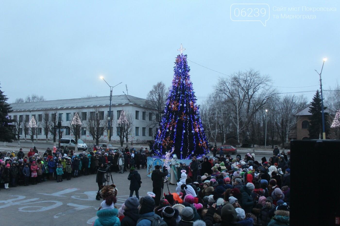 Центр Мирнограда засиял новогодними огнями , фото-1