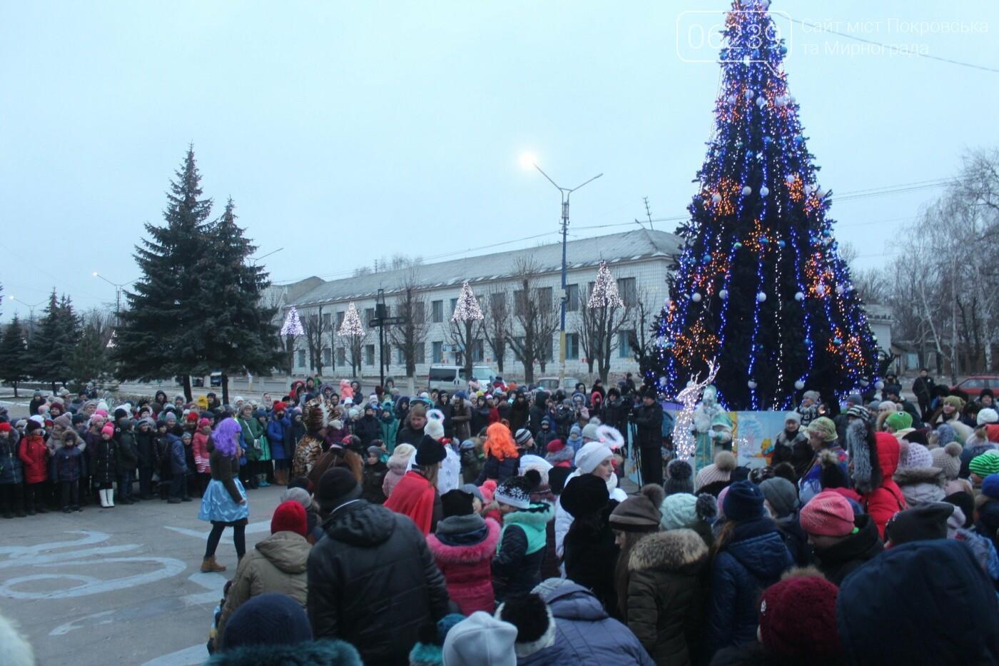 В Мирнограде торжественно открыли главную городскую ёлку , фото-9